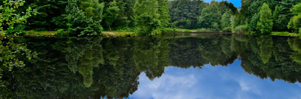 Pond and Lake Management Services from MH Aquatics